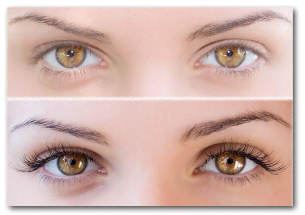Bellevue Eyelash Extensions & Expert Lash Extensions | ASBS